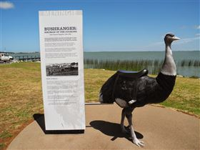 Birdman of the Coorong - Accommodation Gold Coast