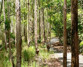 Hallorans Hill Conservation Park - Accommodation Gold Coast