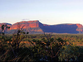 Blackdown Tableland National Park - Accommodation Gold Coast