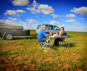 Long Paddock - Cobb Highway Touring Route - Accommodation Gold Coast