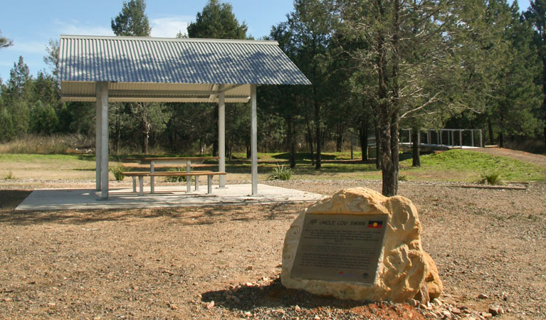 Terry Hie Hie picnic area - Accommodation Gold Coast