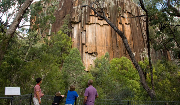 Sawn Rocks walking track - Accommodation Gold Coast