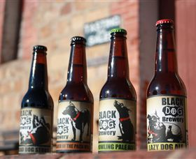 Black Dog Brewery - Accommodation Gold Coast