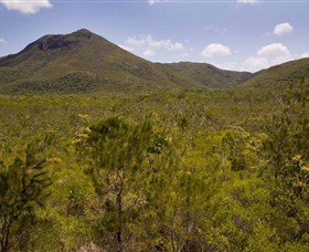 Kutini-Payamu Iron Range National Park CYPAL - Accommodation Gold Coast