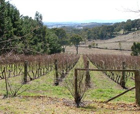 Habitat Vineyard - Accommodation Gold Coast