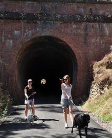 Cheviot Tunnel - Accommodation Gold Coast
