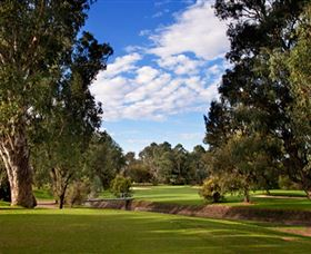 Commercial Golf Course - Accommodation Gold Coast