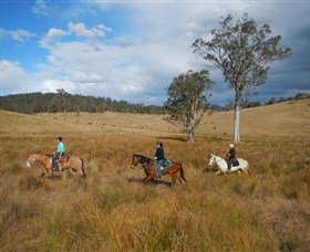 Chapman Valley Horse Riding - Accommodation Gold Coast