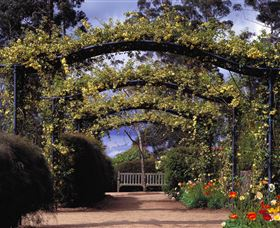 Blue Mountains Botanic Garden - Accommodation Gold Coast