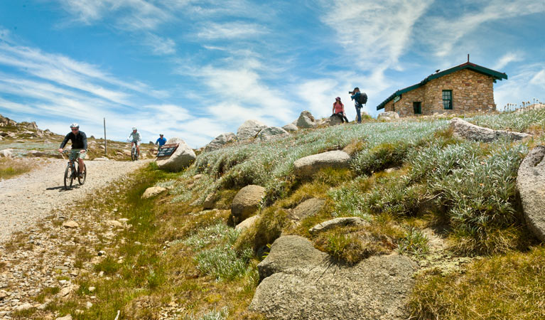 Mount Kosciuszko Summit walk - Accommodation Gold Coast