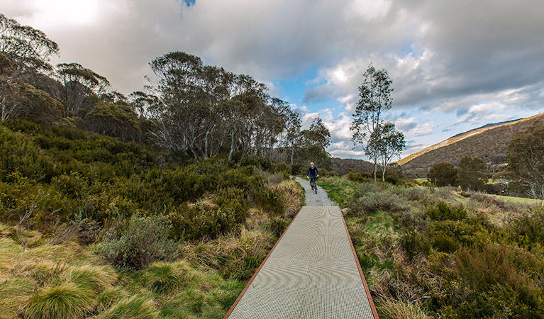 Thredbo Valley track - Accommodation Gold Coast