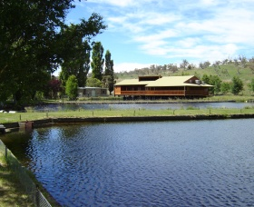 Gaden Trout Hatchery - Accommodation Gold Coast