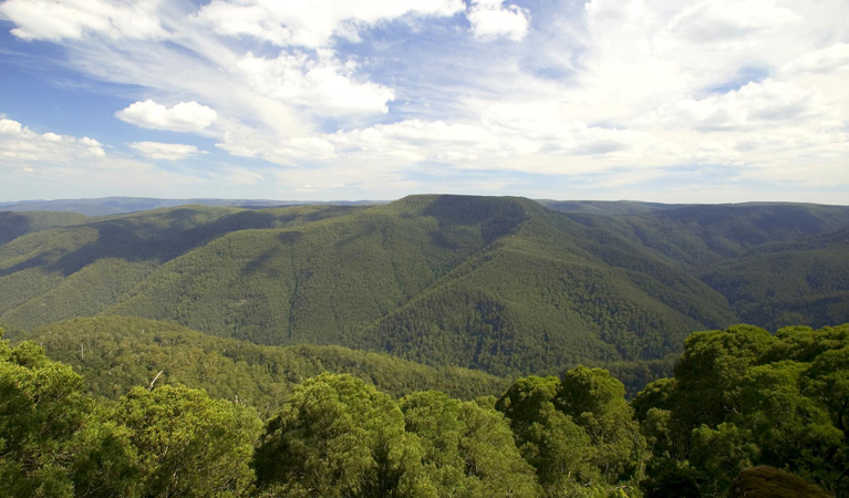 Barrington Tops National Park - Accommodation Gold Coast
