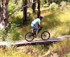 The Steps Mountain Bike Park - Accommodation Gold Coast