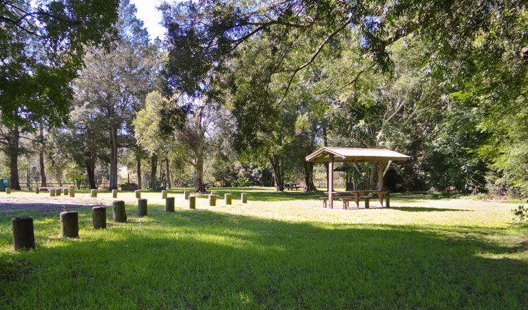 Moore Park picnic area - Accommodation Gold Coast