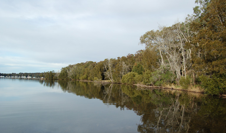 Lake Macquarie State Conservation Area - Accommodation Gold Coast