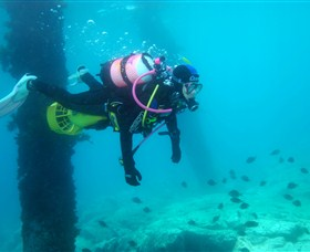 Shellharbour Scuba  Photography Centre - Accommodation Gold Coast