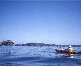 Kayaking Batemans Bay - Accommodation Gold Coast