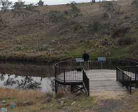 Bombala Platypus Reserve - Accommodation Gold Coast