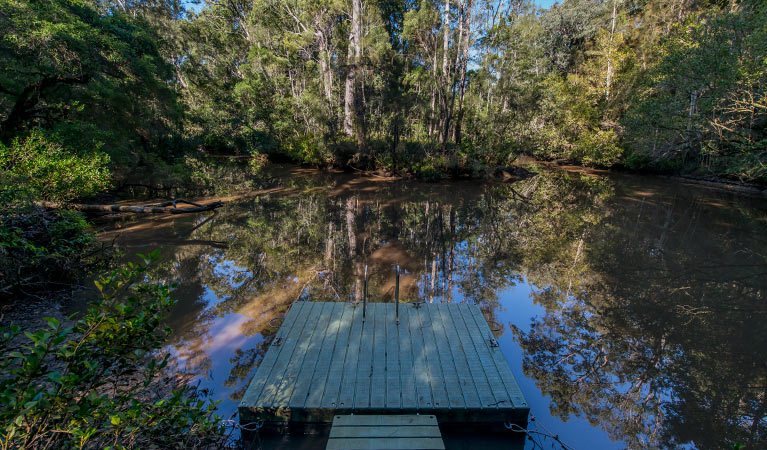 Brimbin Nature Reserve - Accommodation Gold Coast