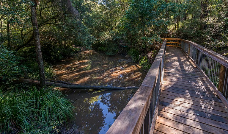 Ms Kellys walking track - Accommodation Gold Coast