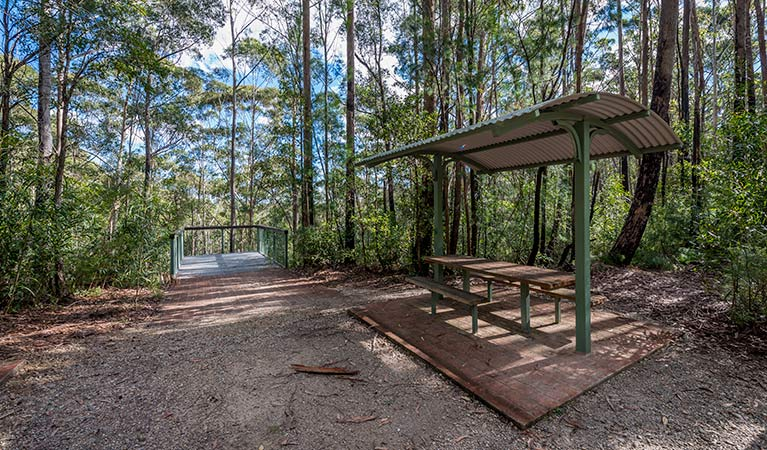 Big Nellie lookout and picnic area - Accommodation Gold Coast