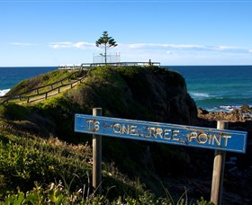 One Tree Point Lookout and Picnic Area - Accommodation Gold Coast