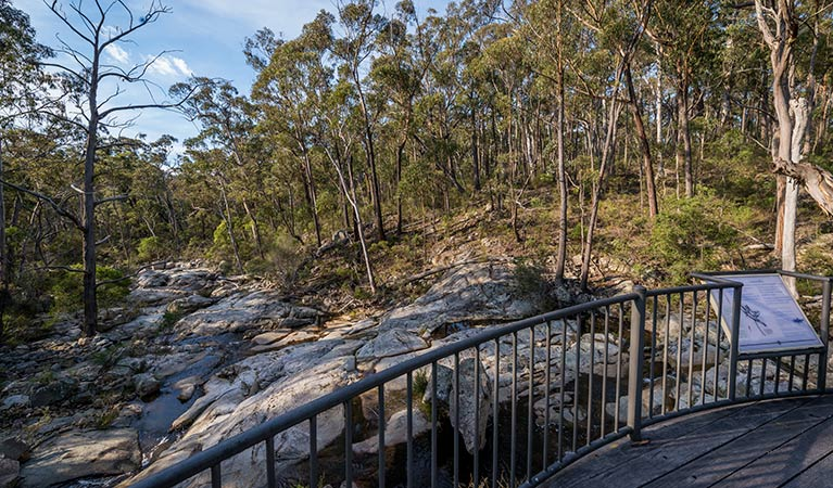 Myanba Gorge walking track - Accommodation Gold Coast