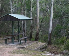 White Rock River picnic area - Accommodation Gold Coast