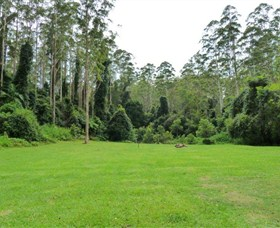 Kerewong State Forest - Accommodation Gold Coast