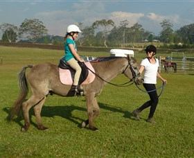 Port Macquarie Horse Riding Centre - Accommodation Gold Coast