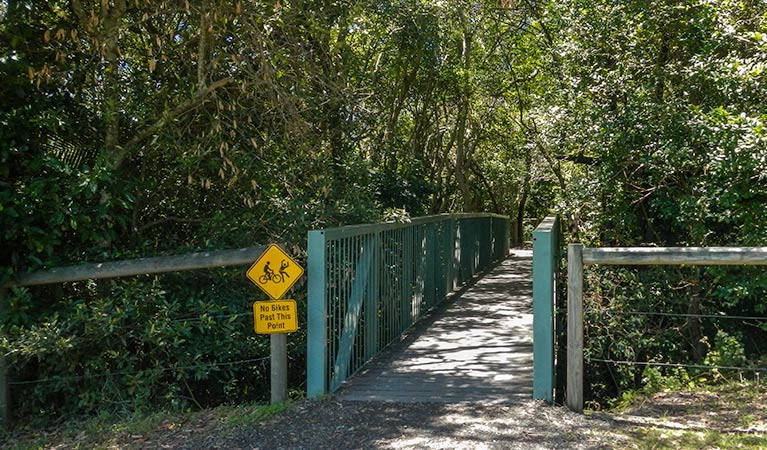Diamond Head Loop walk - Accommodation Gold Coast