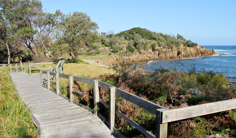 Mimosa Rocks walking track - Accommodation Gold Coast