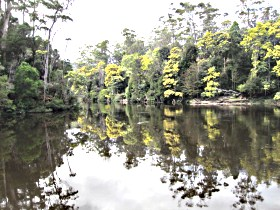 Arthur River - Accommodation Gold Coast