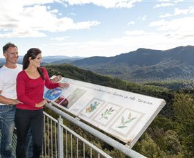 Whyte Hills Lookout - Accommodation Gold Coast