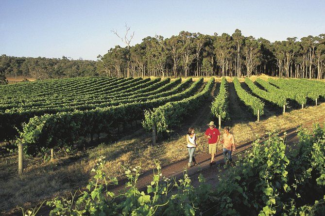 Margaret River Caves Wine and Cape Leeuwin Lighthouse Tour from Perth - Accommodation Gold Coast