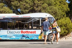 Rottnest Island Tour from Perth or Fremantle including Bus Tour - Accommodation Gold Coast