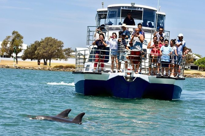 Mandurah Dolphin and Scenic Canal Cruise - Accommodation Gold Coast