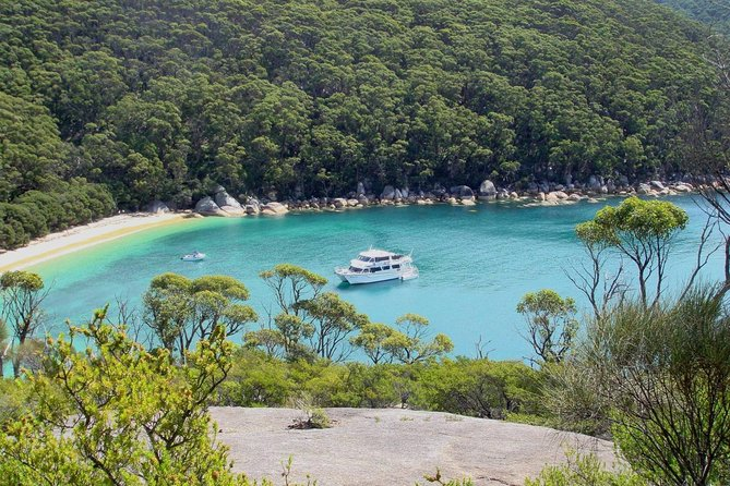 Wilsons Promontory Full Day Cruise - Accommodation Gold Coast