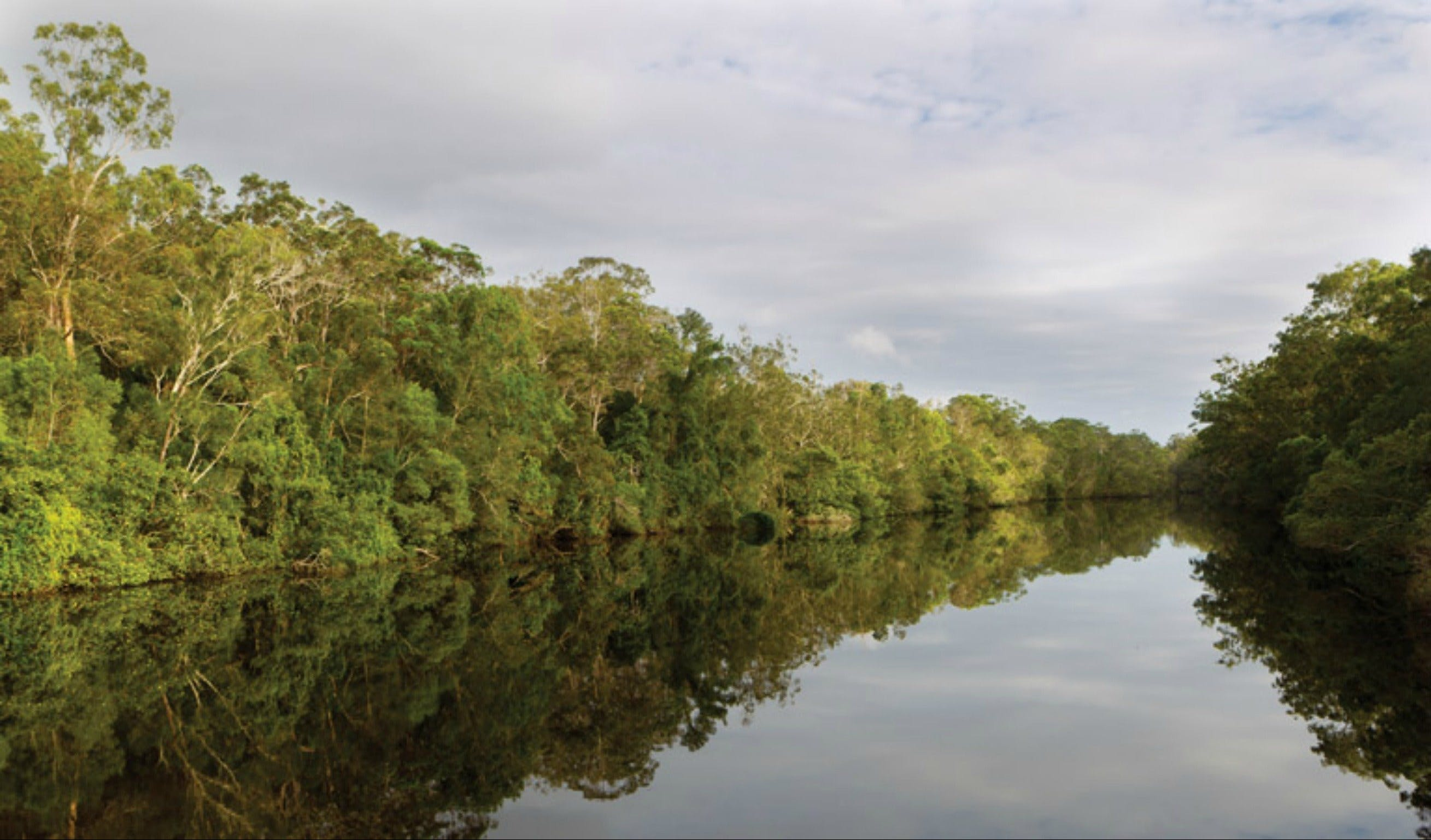 Esk River paddle route - Accommodation Gold Coast