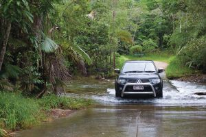 The Pioneer Valley and Eungella National Park - Accommodation Gold Coast