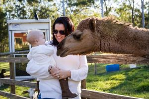 White Ridge Farm - Accommodation Gold Coast