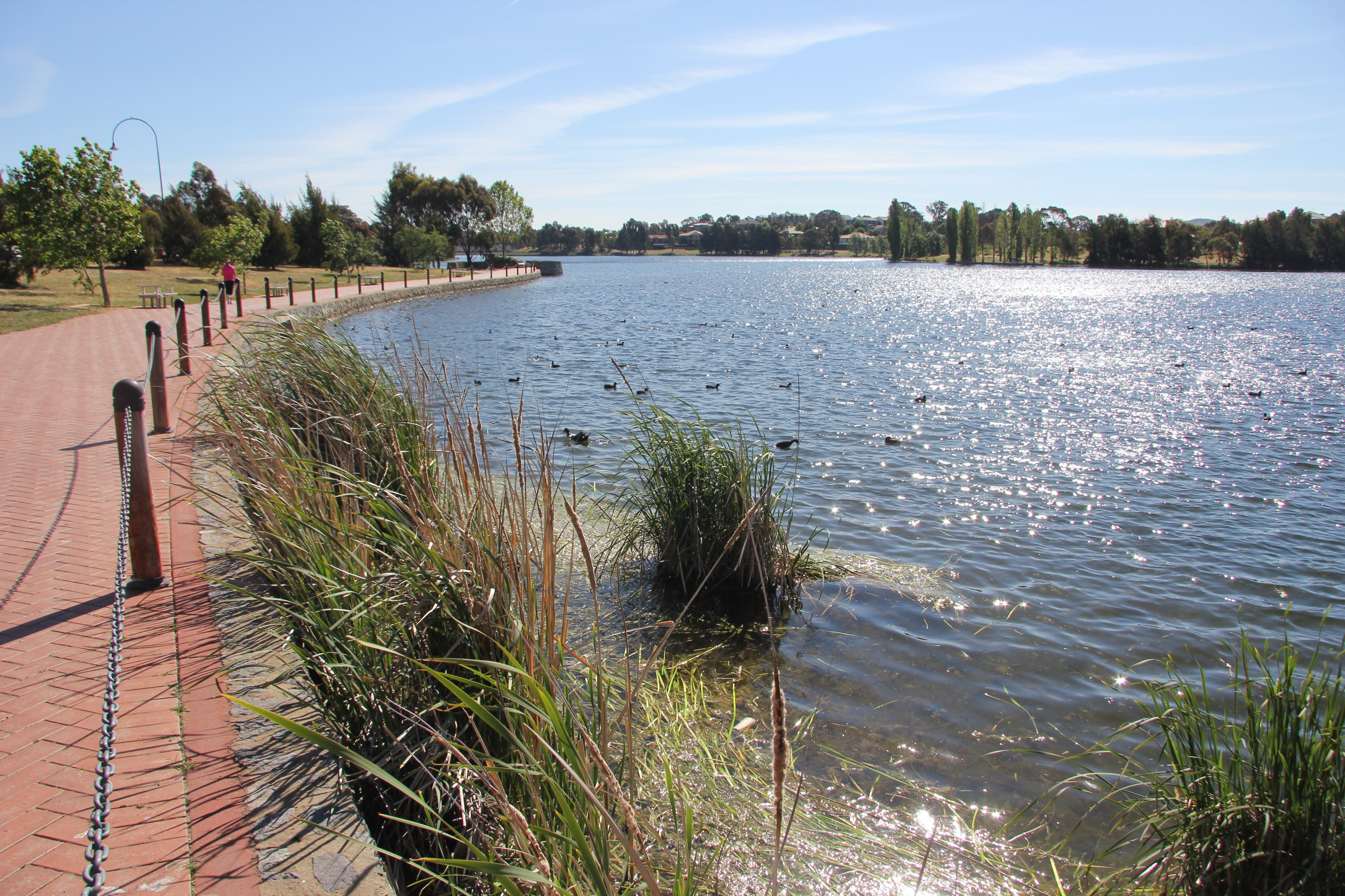 Yerrabi Pond - Accommodation Gold Coast