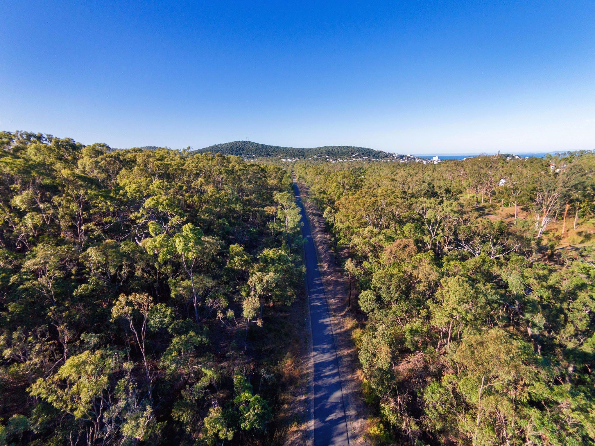Capricorn Coast Pineapple Rail Trail - Accommodation Gold Coast