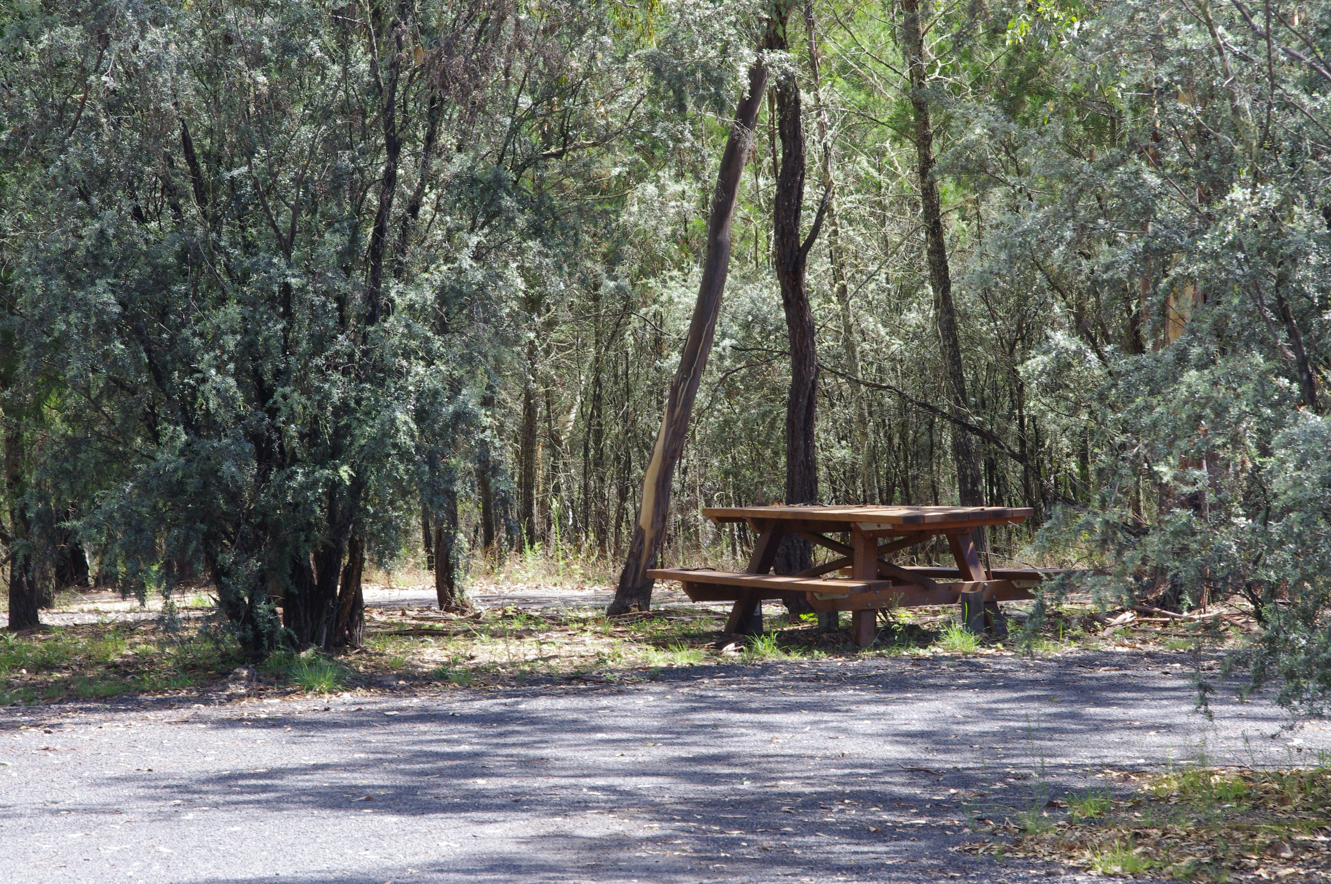 Goonoowigall State Conservation Area - Accommodation Gold Coast