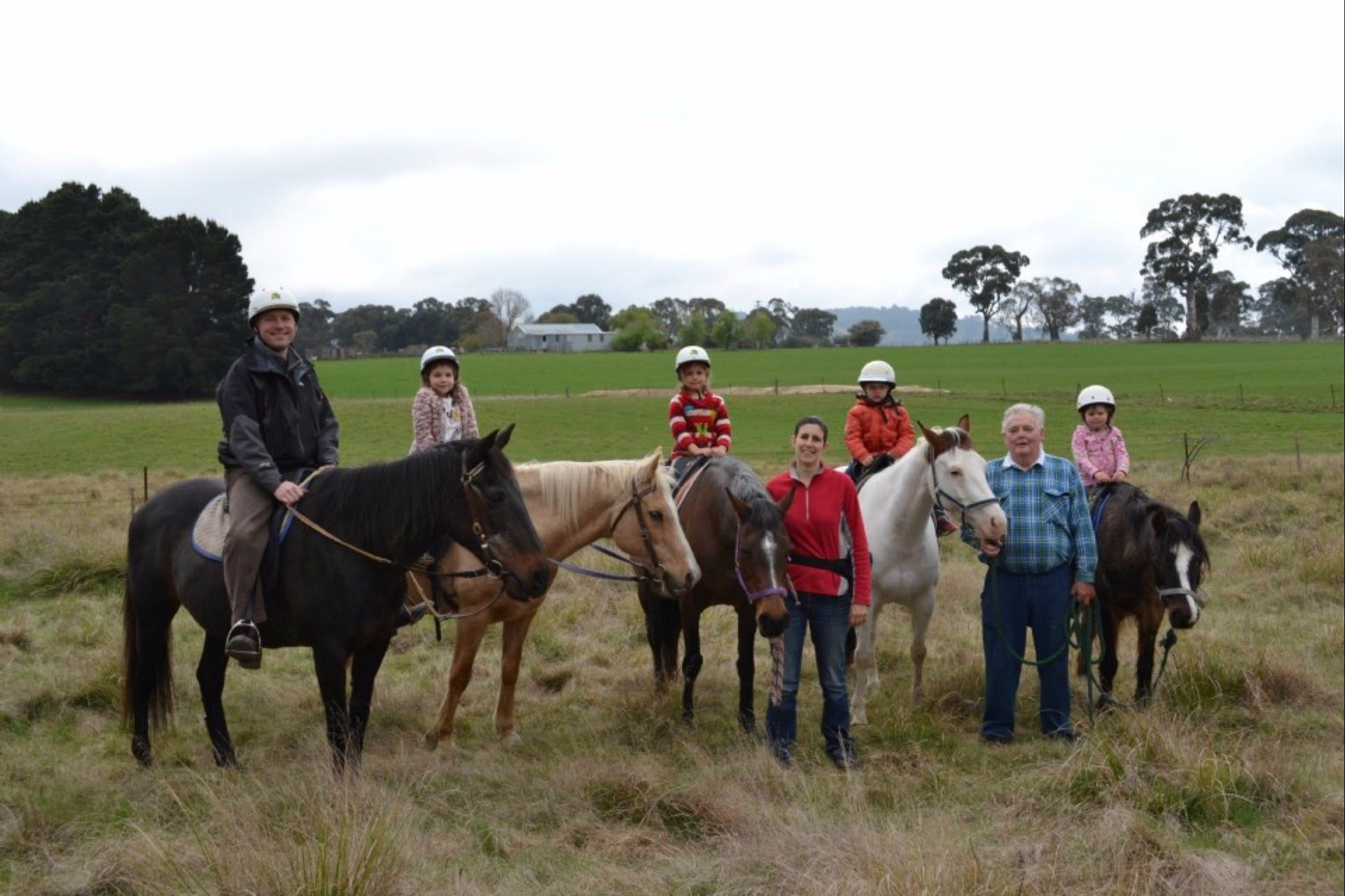 High Country Trail Rides - Accommodation Gold Coast