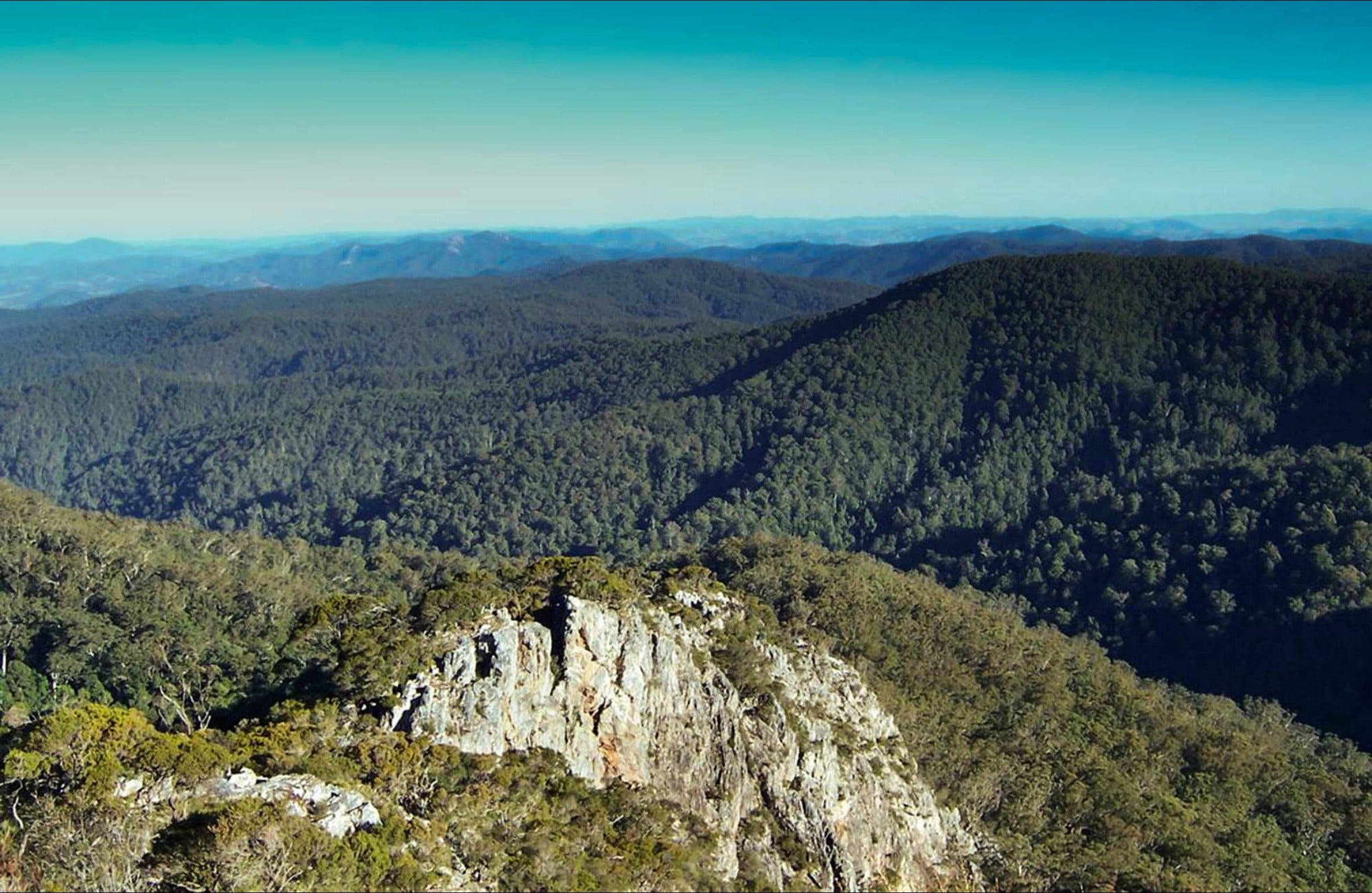 Rowleys Peak lookout - Accommodation Gold Coast
