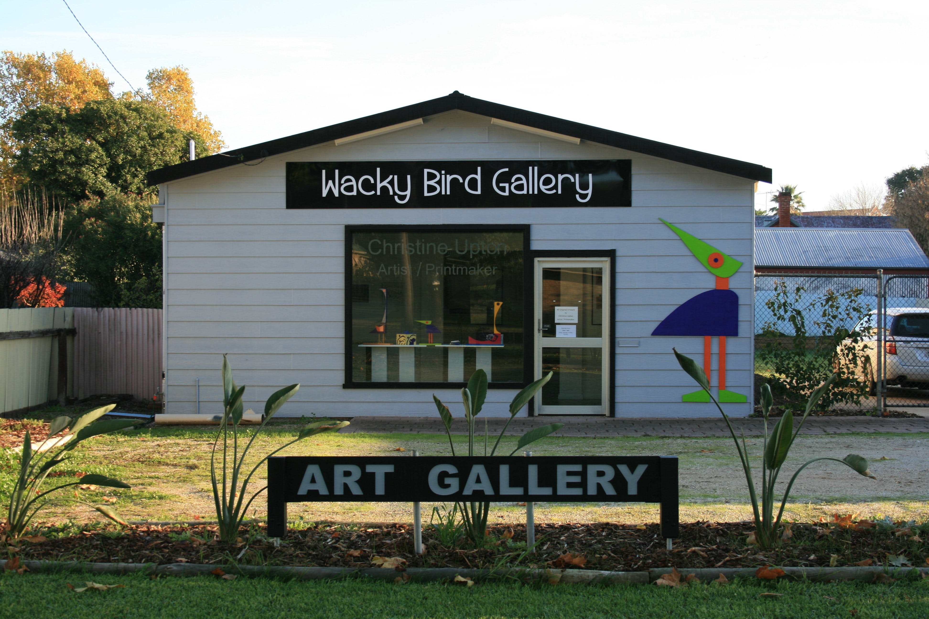 Wacky Bird Gallery - Accommodation Gold Coast