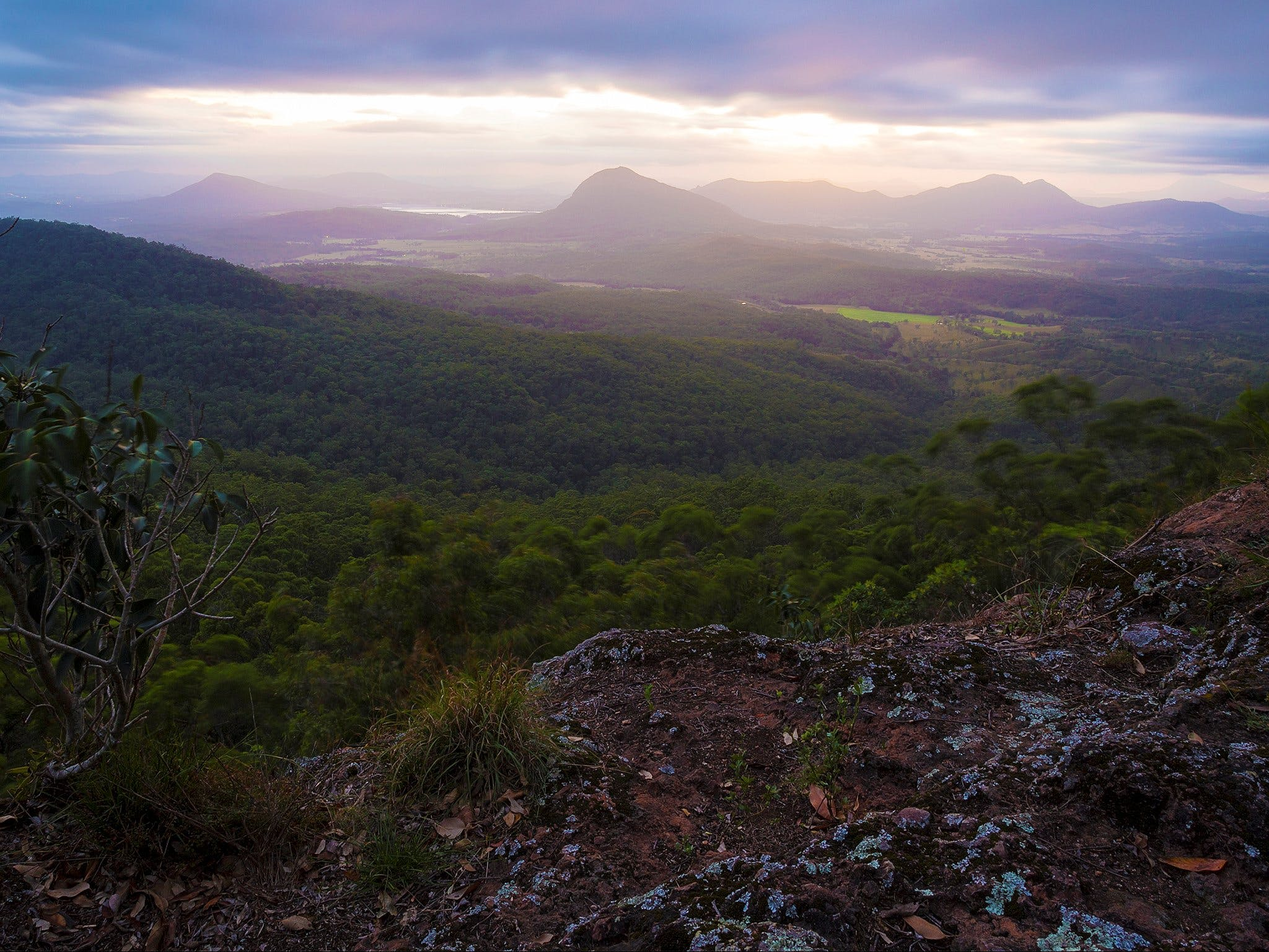 Cunninghams Gap and Spicers Gap Main Range National Park - Accommodation Gold Coast