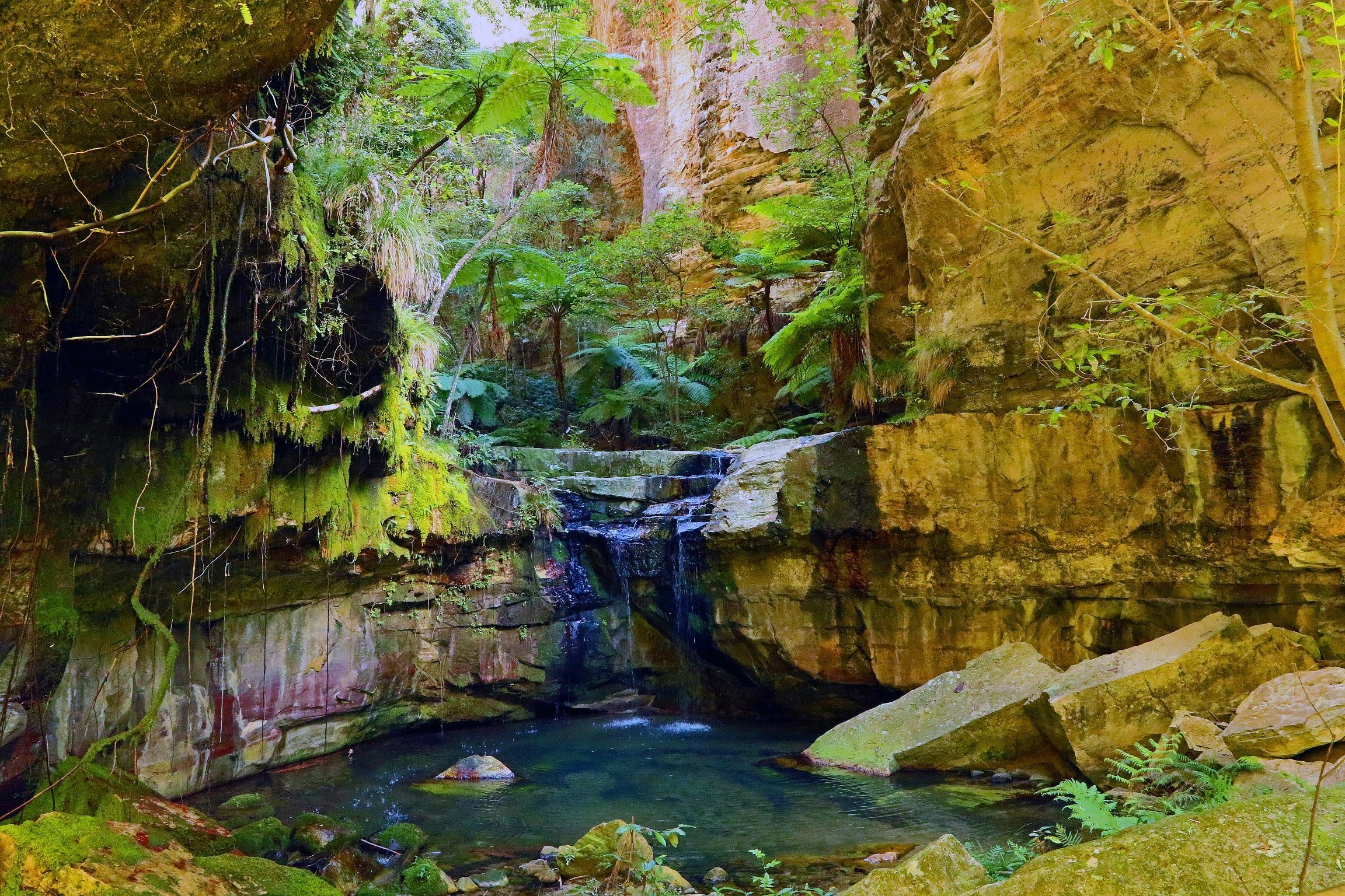 Glimpse of the Outback 5 Day Tour - Roma and Surrounds - Accommodation Gold Coast